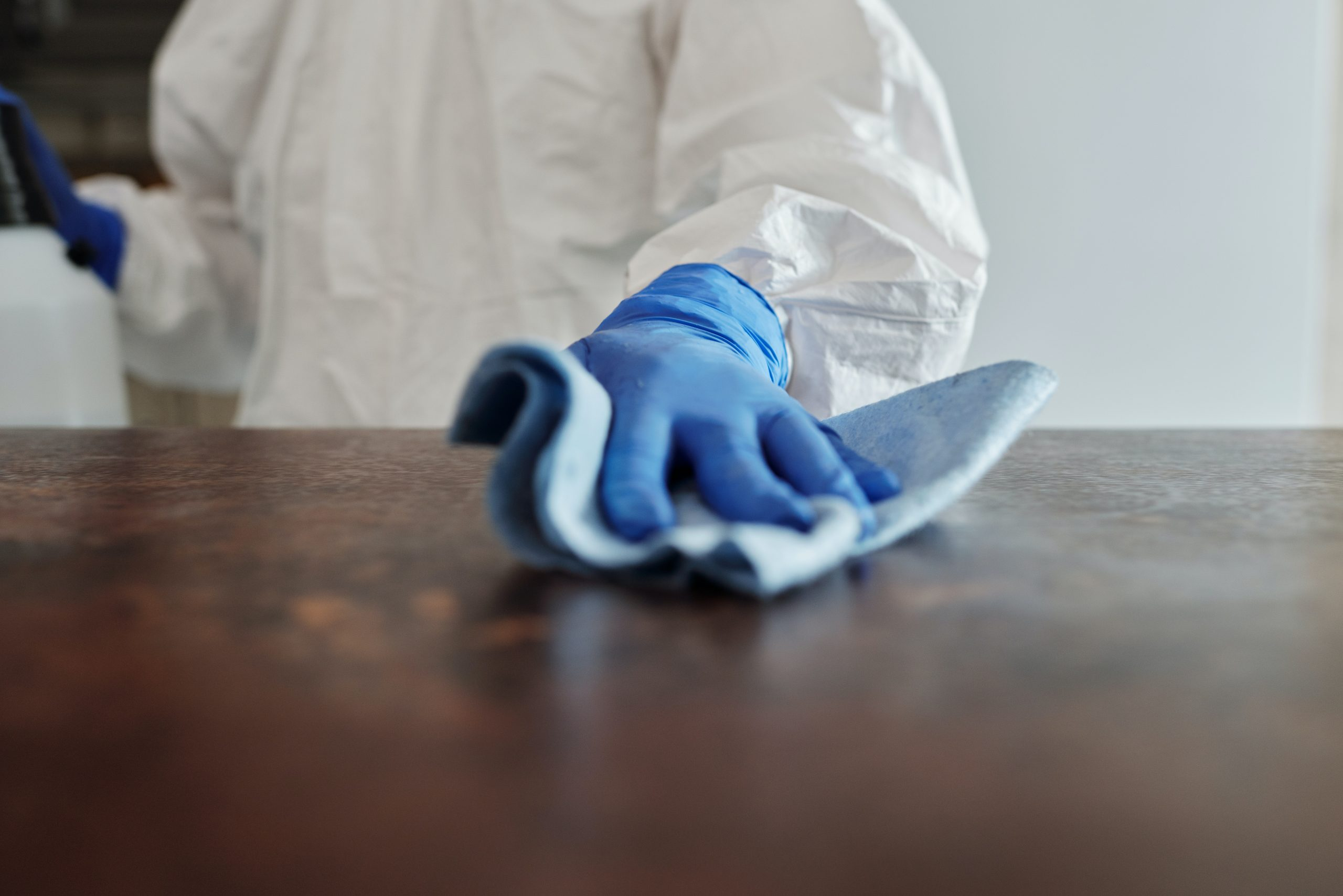 Pest Control - person using gloves wiping a surface