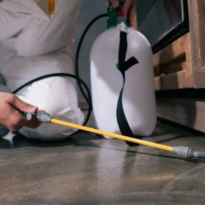 Pest Control Caloundra - cropped image of pest control worker spraying pesticides on floor in kitchen